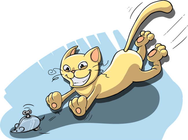 cat-catch-the-mouse